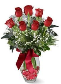 Karaman anneler günü çiçek yolla  7 adet kirmizi gül cam vazo yada mika vazoda