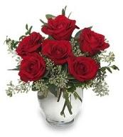 Vazo içerisinde 5 adet kırmızı gül  Karaman cicek , cicekci