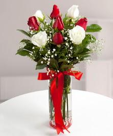 5 kırmızı 4 beyaz gül vazoda  Karaman çiçek mağazası , çiçekçi adresleri