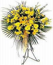 Karaman çiçekçi telefonları  Sari kazablanka Ferforje