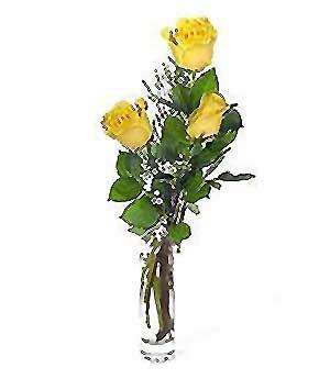 Karaman anneler günü çiçek yolla  3 adet kalite cam yada mika vazo gül
