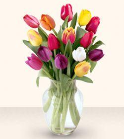 Karaman 14 şubat sevgililer günü çiçek  13 adet cam yada mika vazoda laleler