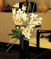 Karaman 14 şubat sevgililer günü çiçek  cam yada mika vazo içerisinde dal orkide