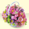 Karaman çiçekçi telefonları  bir sepet dolusu kir çiçegi  Karaman hediye çiçek yolla