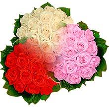 3 renkte gül seven sever   Karaman internetten çiçek siparişi
