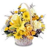 sadece sari çiçek sepeti   Karaman hediye çiçek yolla
