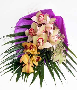 Karaman çiçek mağazası , çiçekçi adresleri  1 adet dal orkide buket halinde sunulmakta