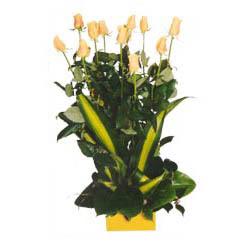 12 adet beyaz gül aranjmani  Karaman çiçek yolla