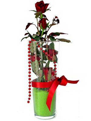 Karaman çiçek online çiçek siparişi  Cam yada mika içerisinde 9 adet kirmizi gül - sevdiklerinize özel