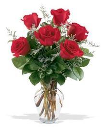 Karaman hediye çiçek yolla  7 adet kirmizi gül cam yada mika vazoda sevenlere