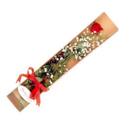 Karaman internetten çiçek siparişi  Kutuda tek 1 adet kirmizi gül çiçegi