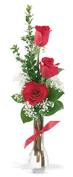 Karaman çiçek mağazası , çiçekçi adresleri  mika yada cam vazoda 3 adet kirmizi gül