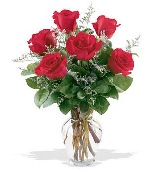 Karaman çiçek mağazası , çiçekçi adresleri  cam yada mika vazoda 6 adet kirmizi gül