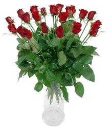 Karaman internetten çiçek satışı  11 adet kimizi gülün ihtisami cam yada mika vazo modeli