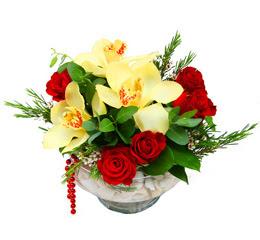 Karaman çiçek siparişi sitesi  1 adet orkide 5 adet gül cam yada mikada