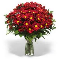 Karaman çiçekçi mağazası  Kir çiçekleri cam yada mika vazo içinde