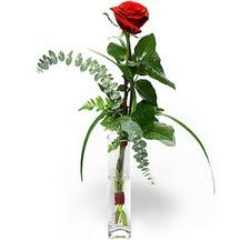 Karaman güvenli kaliteli hızlı çiçek  Sana deger veriyorum bir adet gül cam yada mika vazoda
