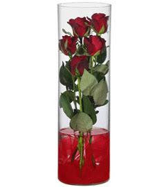 cam içerisinde 7 adet kirmizi gül  Karaman 14 şubat sevgililer günü çiçek