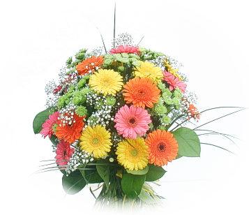 13 adet gerbera çiçegi buketi  Karaman çiçek online çiçek siparişi