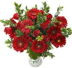 5 adet kirmizi gül 5 adet gerbera aranjmani  Karaman online çiçek gönderme sipariş