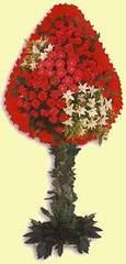 Karaman çiçek siparişi sitesi  dügün açilis çiçekleri  Karaman çiçek yolla , çiçek gönder , çiçekçi
