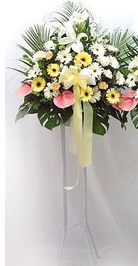 Karaman çiçek online çiçek siparişi   perförje çiçegi dügün çiçekleri