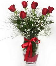 7 adet gülden cam içerisinde güller  Karaman güvenli kaliteli hızlı çiçek