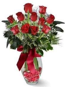 9 adet gül  Karaman uluslararası çiçek gönderme  kirmizi gül