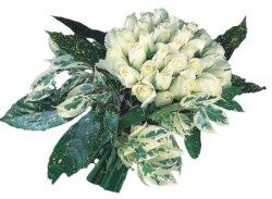 Karaman anneler günü çiçek yolla  9 Beyaz gül Özel kisiler için