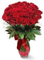 19 adet essiz kalitede kirmizi gül  Karaman güvenli kaliteli hızlı çiçek