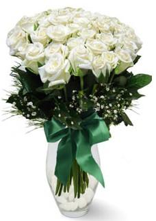 19 adet essiz kalitede beyaz gül  Karaman 14 şubat sevgililer günü çiçek