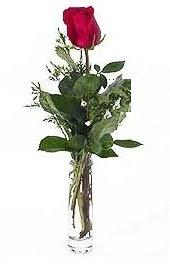 Vazo içerisinde 1 adet kirmizi gül  Karaman çiçek mağazası , çiçekçi adresleri