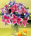 Karaman çiçek gönderme sitemiz güvenlidir  Sevgi bahçesi Özel  bir tercih