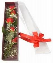 kutu içinde 5 adet kirmizi gül  Karaman anneler günü çiçek yolla