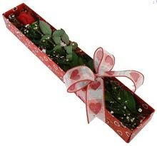Tek kirmizi gül kutu içerisinde  Karaman çiçek gönderme