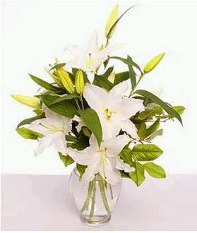 Karaman çiçek siparişi sitesi  2 dal cazablanca vazo çiçeği
