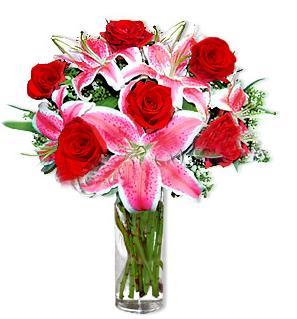 Karaman çiçekçi mağazası  1 dal cazablanca ve 6 kırmızı gül çiçeği