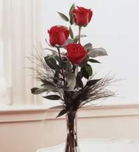 Karaman uluslararası çiçek gönderme  Vazoda 3 adet güzel gül
