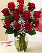 Sevgilime hediye 9 adet 1.ci kalite gül  Karaman yurtiçi ve yurtdışı çiçek siparişi
