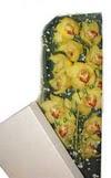 Karaman çiçek siparişi sitesi  Kutu içerisine dal cymbidium orkide
