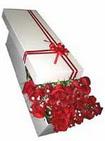 Karaman internetten çiçek satışı  11 adet 1.kalite magnum güller