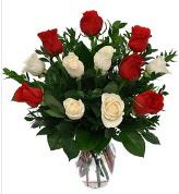 Vazo içerisinde 6 kırmızı 6 beyaz gül  Karaman online çiçek gönderme sipariş