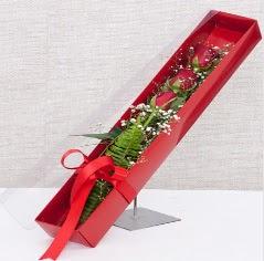 Kutu içerisinde 3 adet kırmızı gül  Karaman çiçek online çiçek siparişi