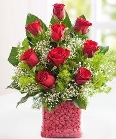 Cam içerisinde 9 adet kırmızı gül  Karaman uluslararası çiçek gönderme