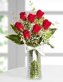Cam vazoda 7 adet kırmızı gül  Karaman internetten çiçek siparişi