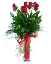 vazo içerisinde 5 kırmızı gül  Karaman çiçek gönderme