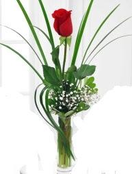 Cam içerisinde 1 kırmızı gül  Karaman hediye çiçek yolla