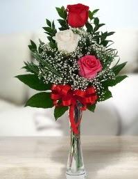 Camda 2 kırmızı 1 beyaz gül  Karaman çiçek siparişi vermek