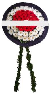 mozele çiçeği  Karaman online çiçekçi , çiçek siparişi