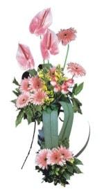 Karaman çiçek gönderme  Pembe Antoryum Harikalar Rüyasi
